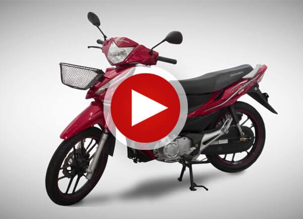 vídeo-zs110